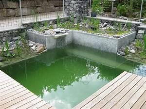 Kleiner Garten Mit Pool : kleiner schwimmteich swimming pool pond pinterest schwimmteich teiche und g rten ~ Markanthonyermac.com Haus und Dekorationen