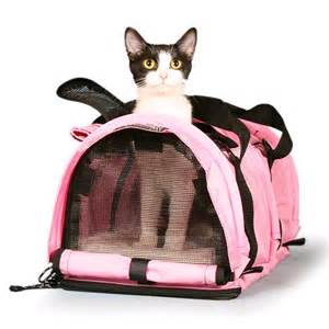 cat carrier small cat carrier nipandbones
