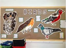 Year One's Birds Displays Eleanor Palmer Primary School