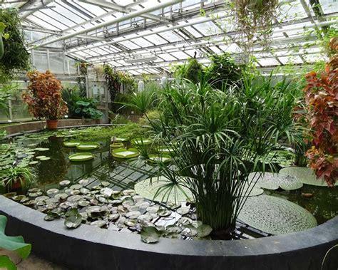 Botanischer Garten Berlin Schmetterlingshaus by Gardensonline Berlin Botanischer Garten Gardens Of The