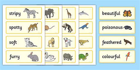 animal adjectives word cards animal adjective movement