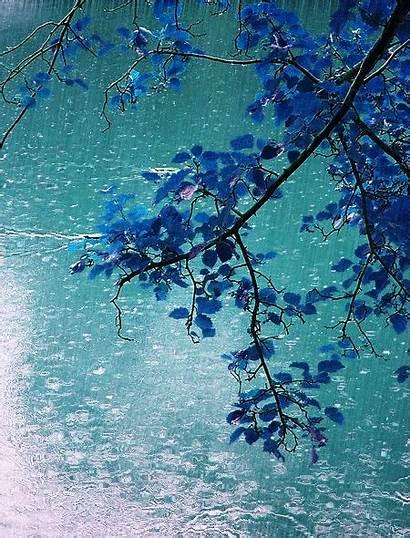 Rain Soft Fall Falling Spring Animated Rainy