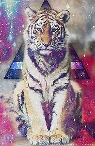 galaxy tiger | Tumblr