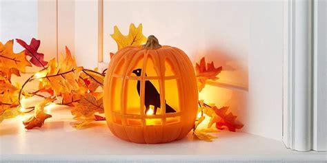 amazon halloween decorations   minute  prime