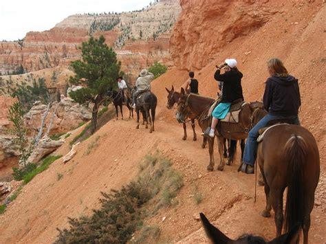 bryce canyon riding horseback horse rides utah through park national area