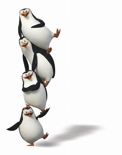 Madagascar Penguins Penguin Transparent Kowalski Purepng Pinguin