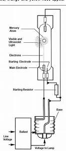 Internal Circuit Mercury Vapor Lamps