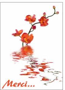 merci mariage remerciement mariage et orchidees carte remerciement mariage par la poste