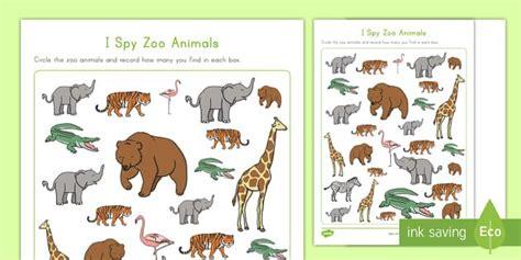 pin  jennifer sloan  teacher hacks  images zoo