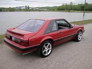 FS/WTT: 91 Mustang LX 5.0 5 Speed w/50k Miles Ohio | StangNet