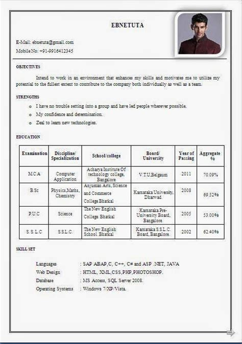 resume format for msc chemistry freshers resume exles