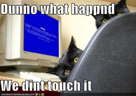 Funny Computer Meme - 13 most funny computer pictures