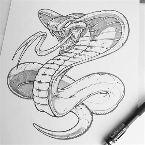The Gallery For Cobra Drawings In Pencil