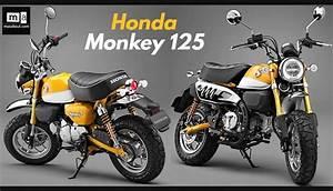 Honda Monkey 125 2018 : honda monkey 125 unveiled tokyo motor show 2017 ~ Kayakingforconservation.com Haus und Dekorationen