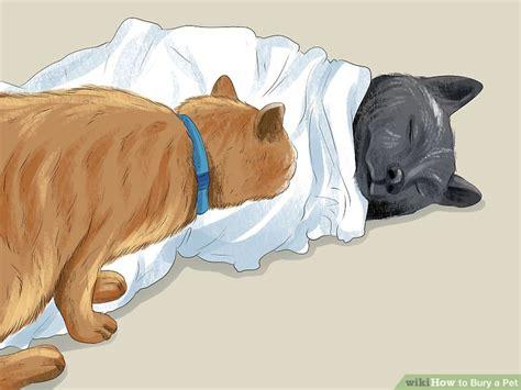 Ways To Bury A Pet-wikihow