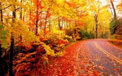 Autumn Wallpapers Fall Latest Winter Leaves Season