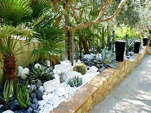 les 25 meilleures idees de la categorie cactus jardin sur With idees amenagement jardin exterieur 1 creer un jardin avec des cactus et des palmiers