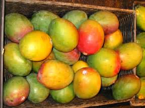 Image result for Mangos