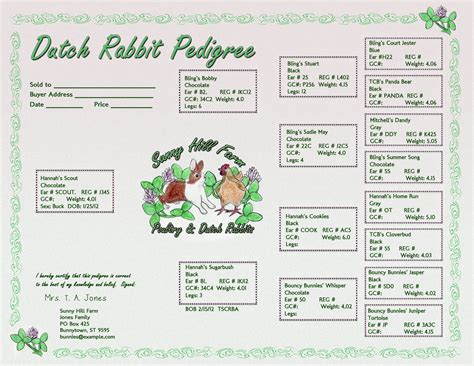 rabbit pedigree template logos for animal breeders
