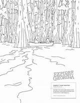 Okefenokee Swamp Lumpkin sketch template