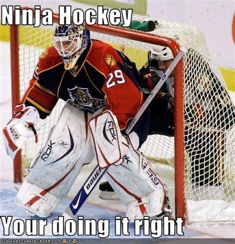 Hockey Goalie Memes - 17 best funny goalie images on pinterest hockey goalie ice hockey and hockey