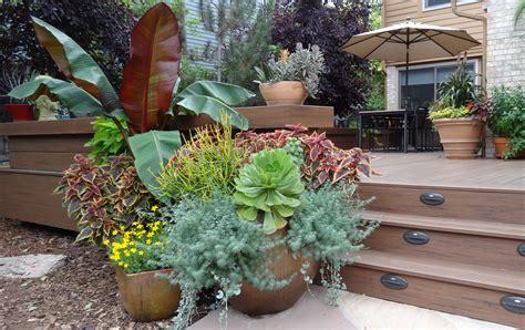 Revisiting Sheila's Garden In Colorado, Day 2containers