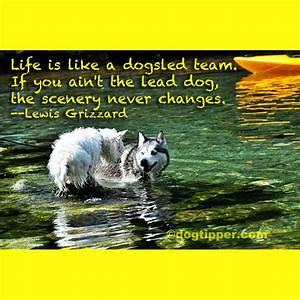 Famous Dog Trav... Dog Sledding Quotes