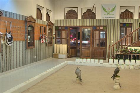 Slideshow 1040-10: Falconry accessories for sale in Bird ...