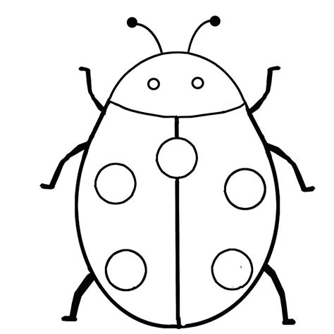 bug template insects coloring pages getcoloringpages