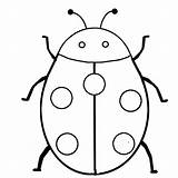Insects Coloring Pages Bugs Insect Bug Outline Beetle Cartoon Printable Mosquito Getcoloringpages sketch template