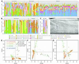 The Native Microbiome Of The Nematode C  Elegans  A U2013c Frequency Spectra