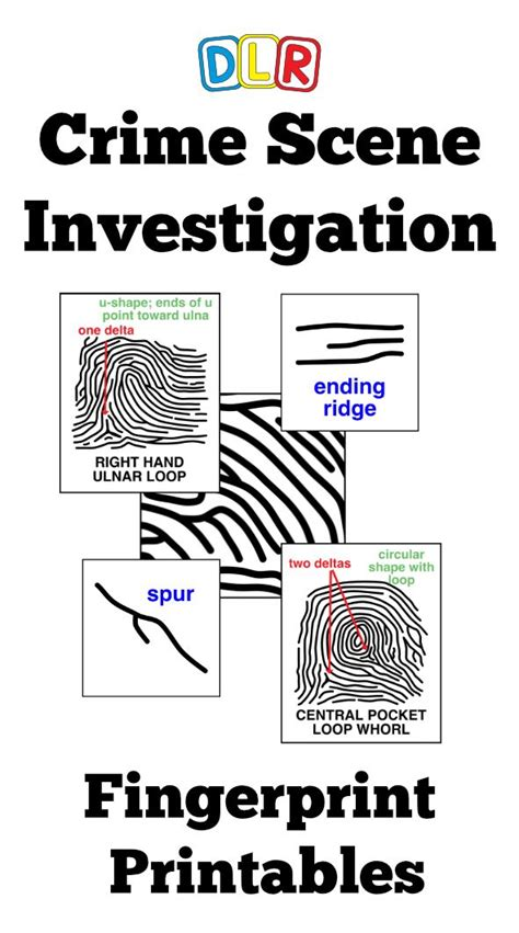 forensic science images  pinterest science