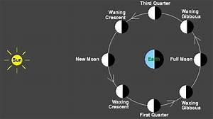 This diagram shows the moon orbiting Earth as seen from ...