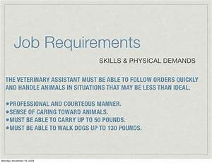 Building Training And Retaining Your Veterinary Dream Team