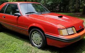 Another Cheap Turbo: 1986 Ford Mustang SVO