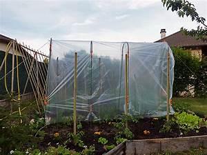 Abri A Tomate : essai de tomates sous serre au jardin forum de jardinage ~ Premium-room.com Idées de Décoration