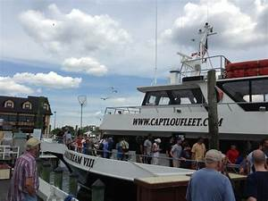 17 Best Images About Capt Lou Fishing Trips On Pinterest