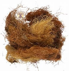 Кукурузные рыльца и очистка печени
