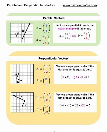 Perpendicular Parallel Vectors Geometry Maths Math Worksheets