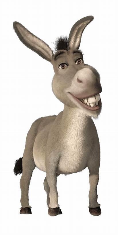 Shrek Characters Cartoon Madagascar Character Blakley Kaylor