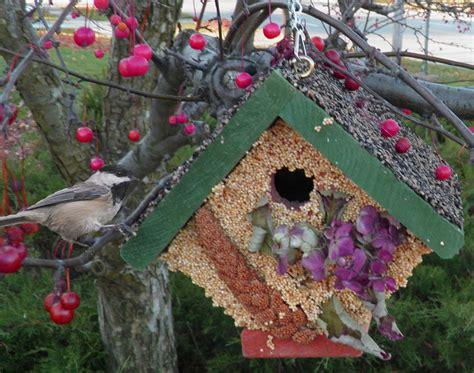 wild birds unlimited november 2013