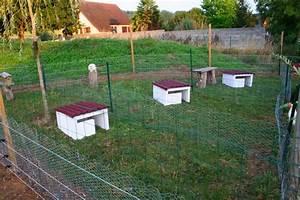 Que Donner A Manger A Un Ecureuil Sauvage : abri pour couvaison cane ~ Dallasstarsshop.com Idées de Décoration