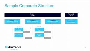 Corporate Structures And Inter-company Transactions