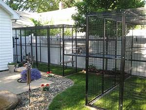 Is your cat missing her litter box for Dog run cage enclosure
