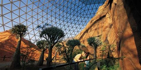 omaha henry doorly zoo she builds home 2018 travel plans