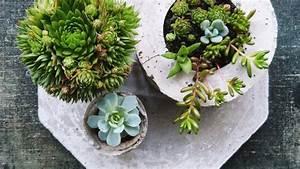 Pflanzgefäße Für Draußen : einrichten im gr nen die sch nsten ideen f r deinen garten ~ Orissabook.com Haus und Dekorationen