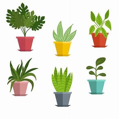 Plant Potted Vector Clipart Plants Bushes Pot
