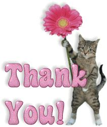 you cat thank you glitters images page 13