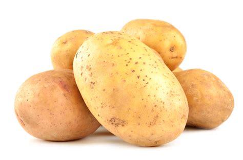 Priekuļos radītas divas jaunas kartupeļu šķirnes, izturīgas pret slimībām | Praktiski.lv