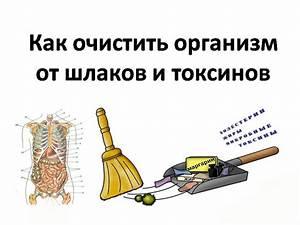 Лечение псориаза мазь софора